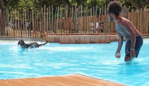 Pet Friendly Camping & Resort Sangulí Salou