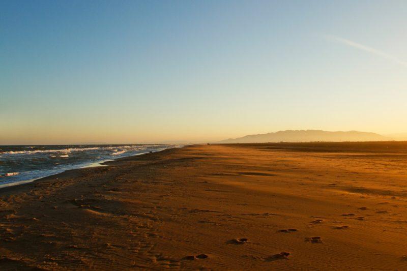 header-platja-eucaliptus