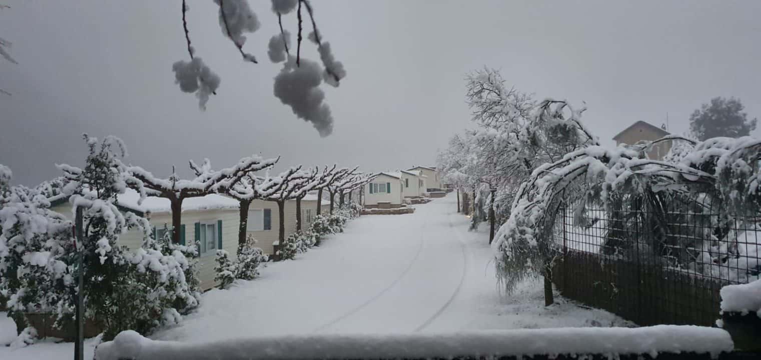Camping Port Massaluca, Enero 2021